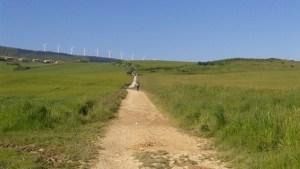 Le chemin entre Pampelune et Puente la Reina