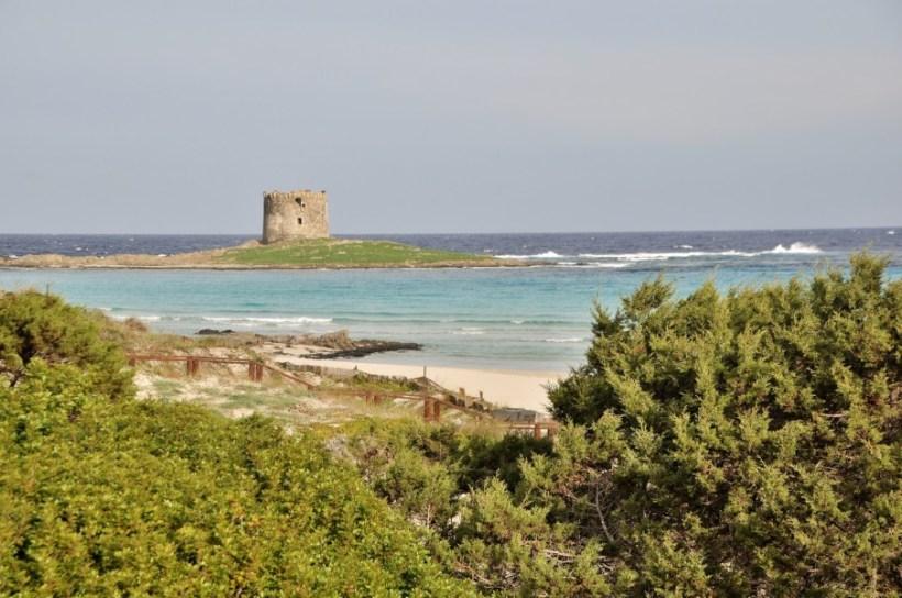 Nord de la Sardaigne, plage de La Pelosa