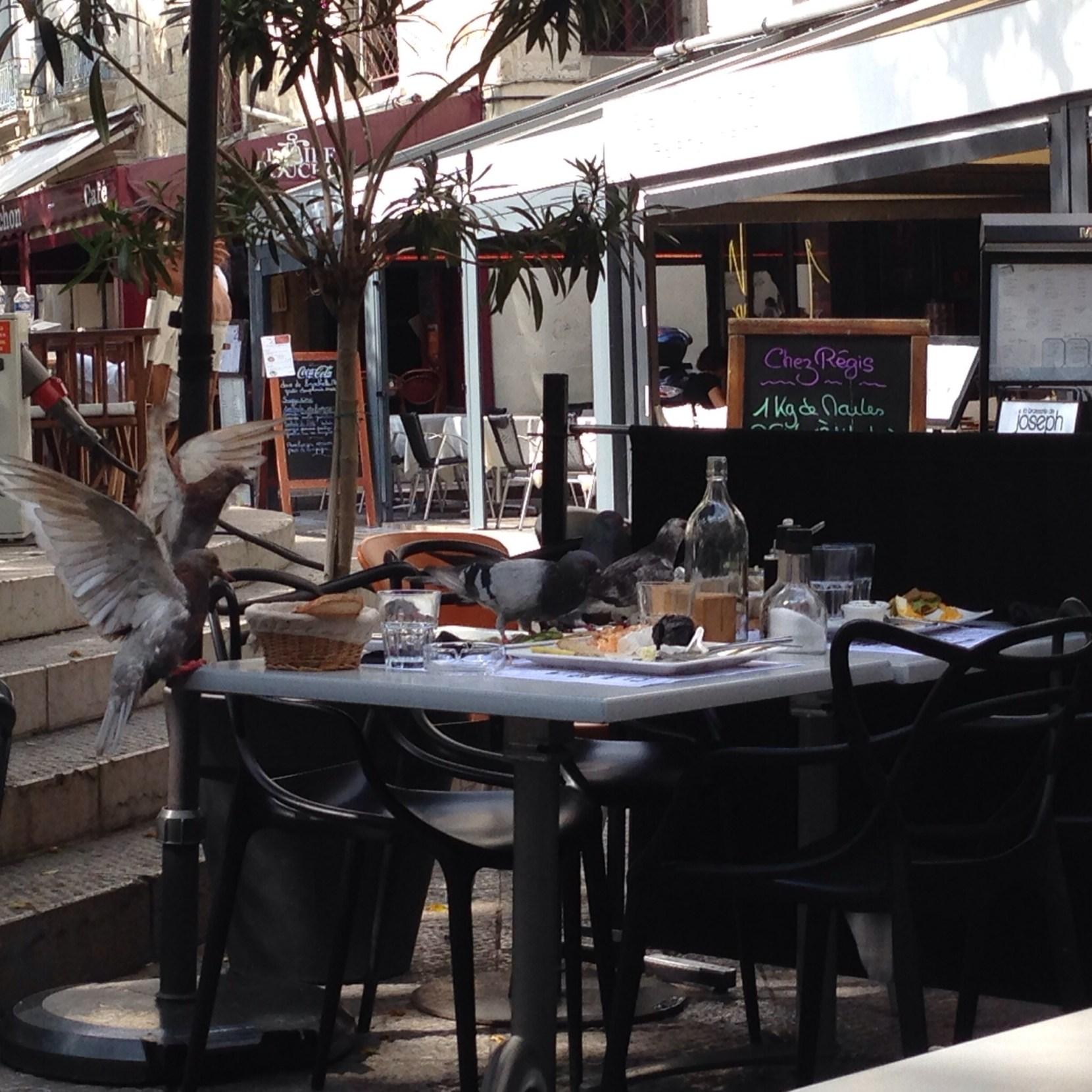 Déjeuner à ma première cantine - Montpellier