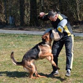 Résultats du Challenge romand du berger allemand les 18-19 mars 2016