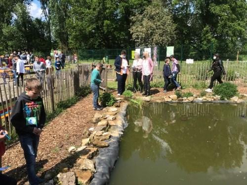 Eco-Schools - La mare