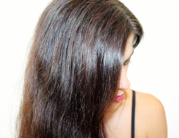 coloration radico brun bourgogne