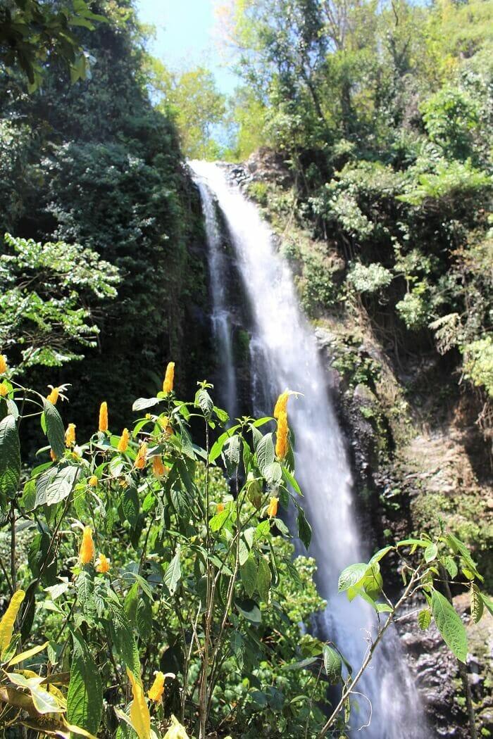 Melanting Waterfall bali munduk