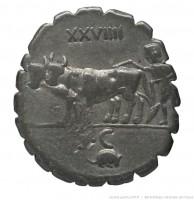 XXVIIII / rat 3.84gr _ 19.3mm
