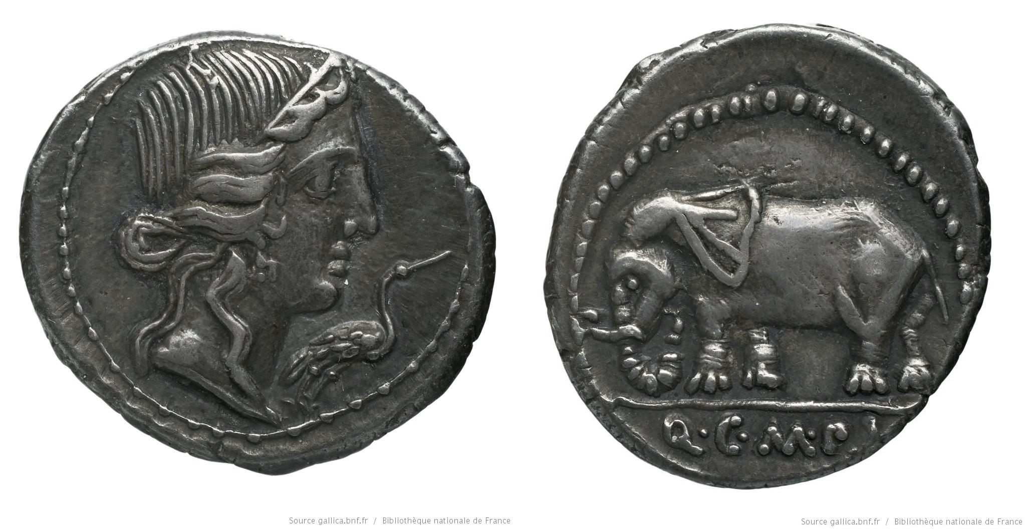 1303CA – Denier Caecilia – Quintus Cæcilius Metellus Pius