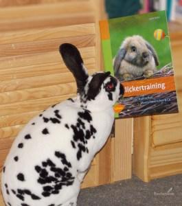 Clickertraining für Kaninchen, Meerschweinchen & Co von Isabel Müller, Cover mit freundlicher Genehmigung vom Verlag Ulmer