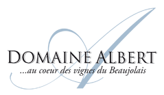 logo-domainealbert