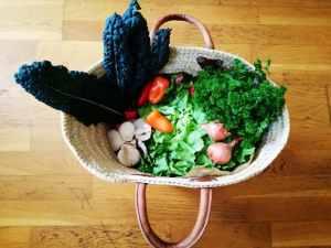 les-ethicuriens-bien-manger-panier-légumes-bio