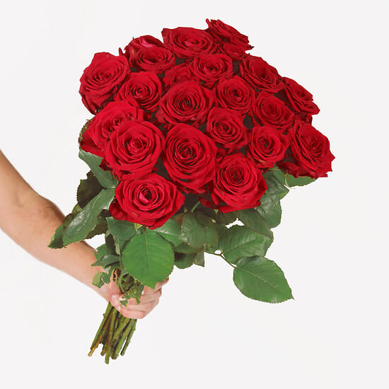 24 roses rouges daily flowers ch