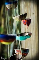 birds_bugs-3350