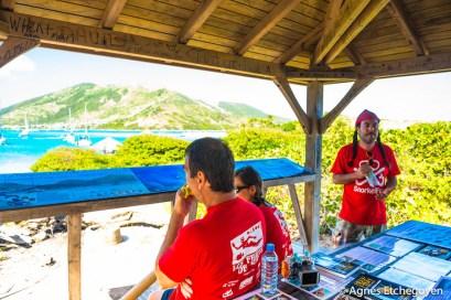 snorkelfest-28-sur-95