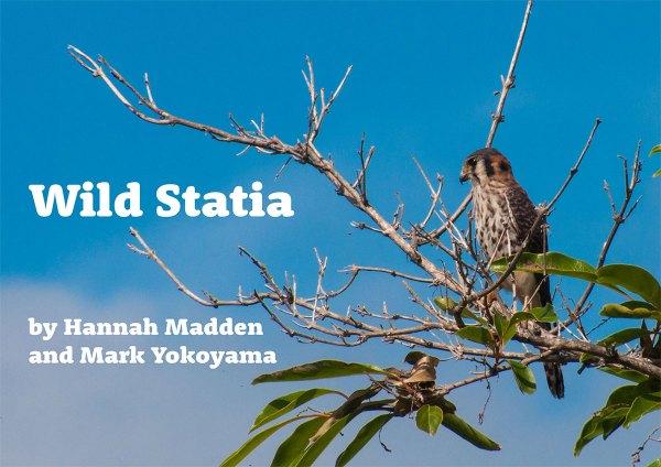 Wild-Statia-web