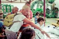 migratorybirdfest2015-0775