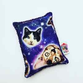 Eponge chats cosmiques