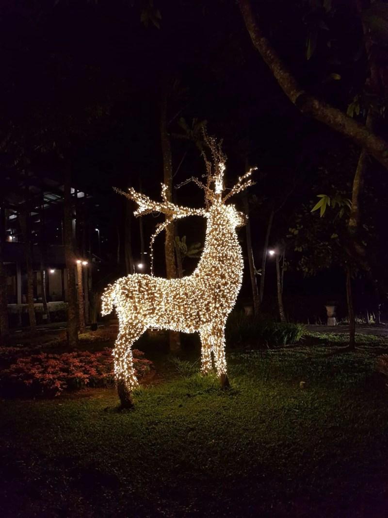 Thaïlande, ambiance de Noël au Dasada Café 🦌 11