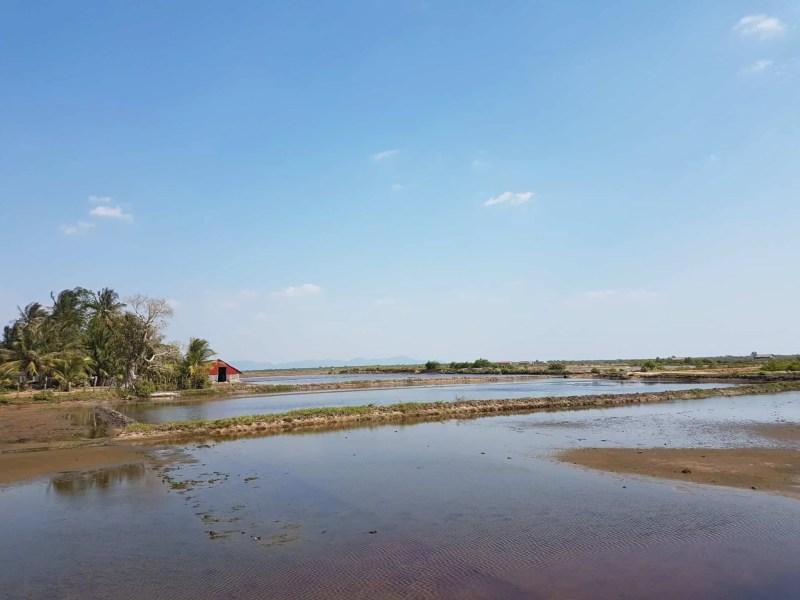 Cambodge, marais salants et hôtel de folie à Kampot 🤩 4