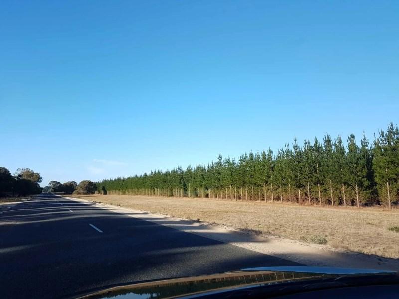 Australie, la beauté du Blue Lake formé dans le cratère d'un volcan 🌋 10