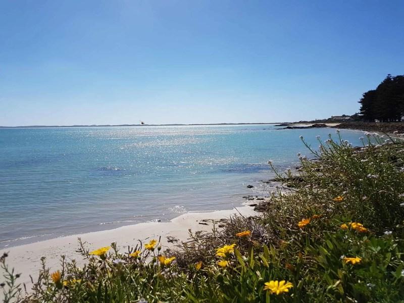 Australie, la beauté du Blue Lake formé dans le cratère d'un volcan 🌋 9