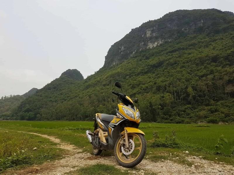 Vietnam, la magnifique réserve naturelle de Vân Long 🌾 11