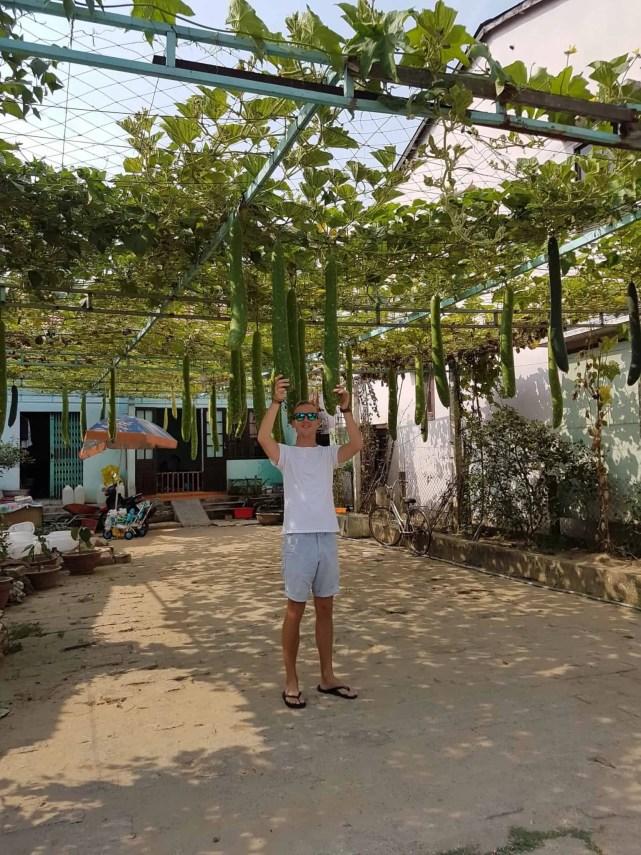 Vietnam, Hoi An la ville des mille lanternes 🏮 27