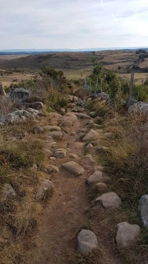 Chemin de Compostelle, les jolies rencontrent qui éclairent notre Chemin à Nasbinals 🙌 7