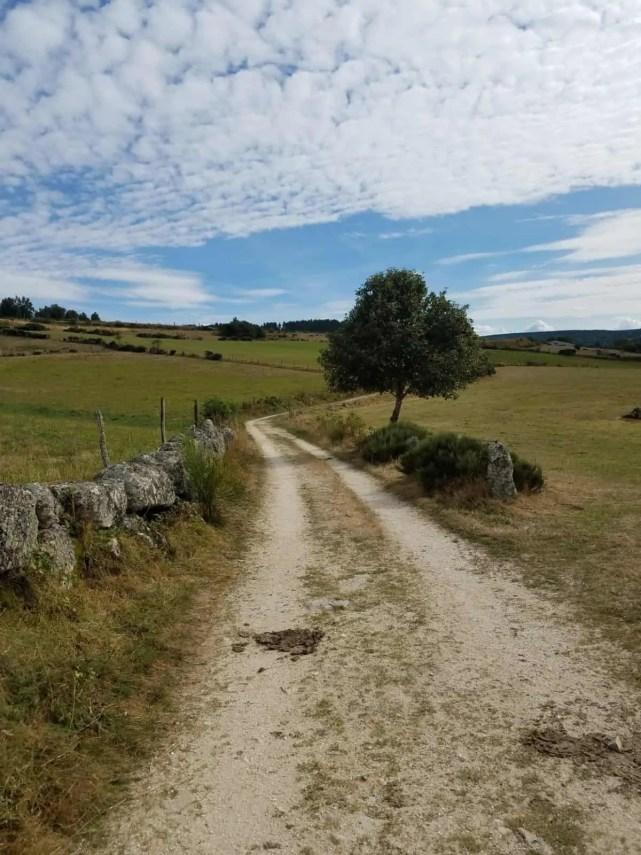 Chemin de Compostelle, arrivée à Chanaleilles avec les jambes lourdes 🦶 13