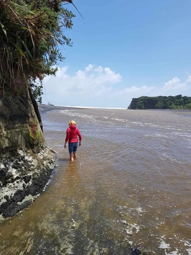 Nouvelle-Zélande, les Three Sisters et l'Elephant Rock plantés au beau milieu de la mer 🐘 8