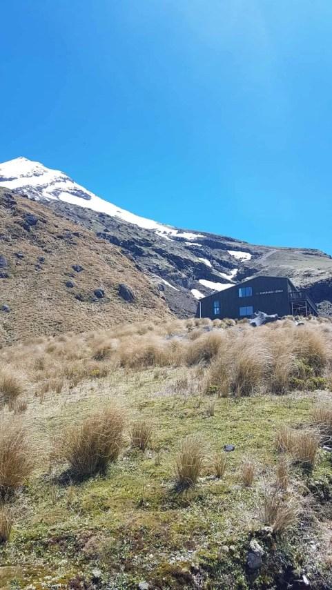 Nouvelle-Zélande, rando Holly Hut Track avec vue sur le Mont Taranaki ❤ 13