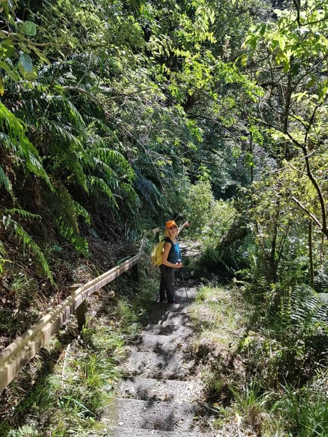 Nouvelle-Zélande, quand ta randonnée se transforme en chasse au trésor dans la jungle 🕵️♂️ 4