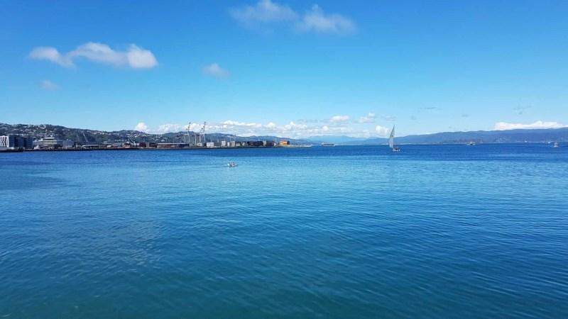 Nouvelle-Zélande, on visite  Wellington avant d'embarquer pour l'île du Sud ⛴ 17