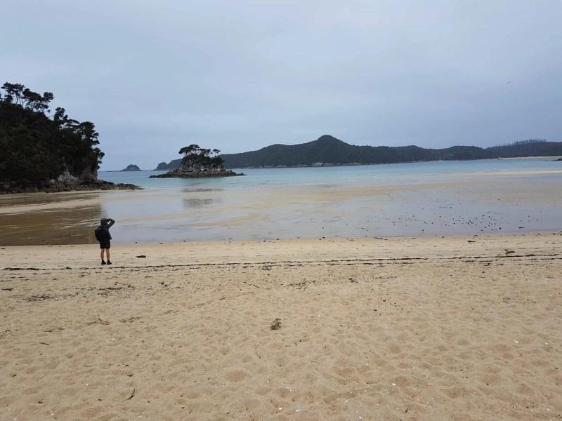 Nouvelle-Zélande, 24 km de randonnée sous la pluie dans le parc d'Abel Tasman 🌧 23