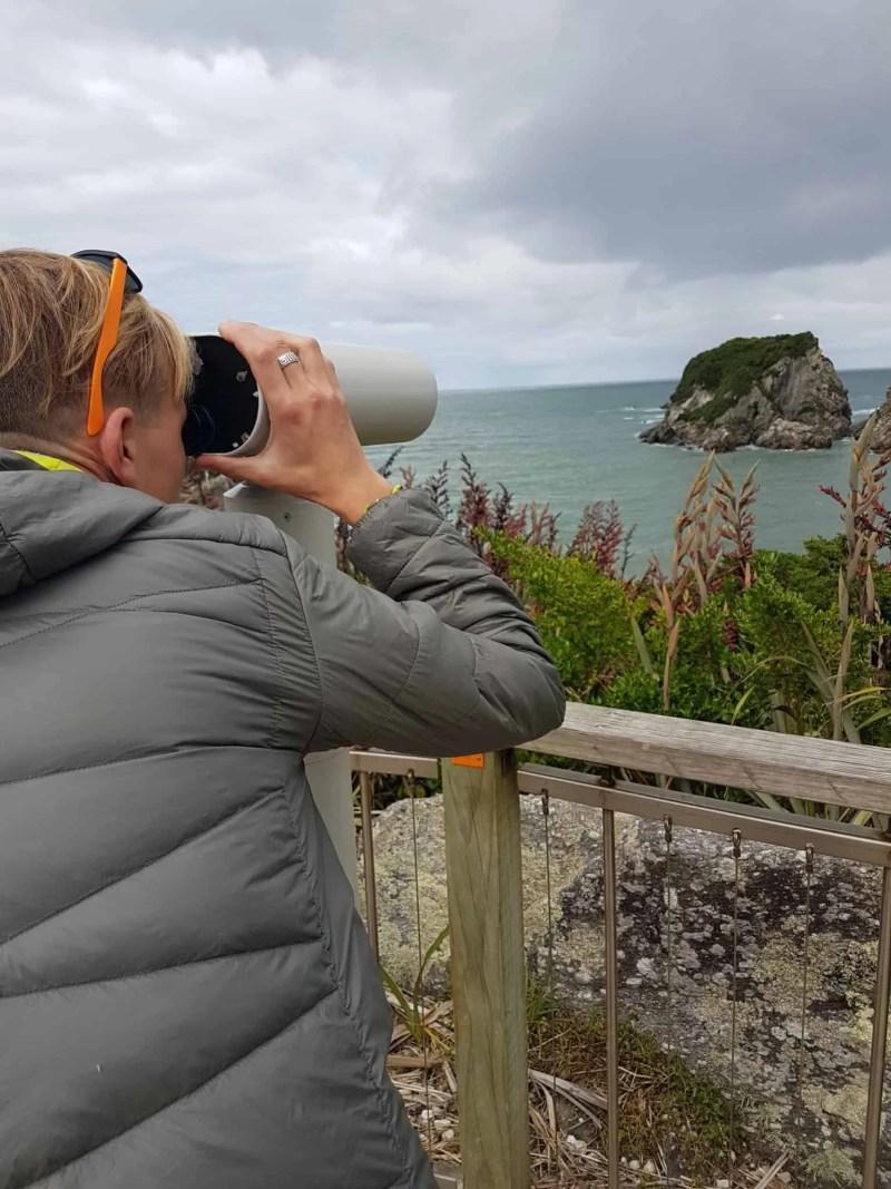 Nouvelle-Zélande, le Cap Foulwind et sa côte sauvage 🌿 3