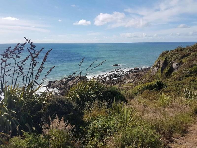 Nouvelle-Zélande, le Cap Foulwind et sa côte sauvage 🌿 14