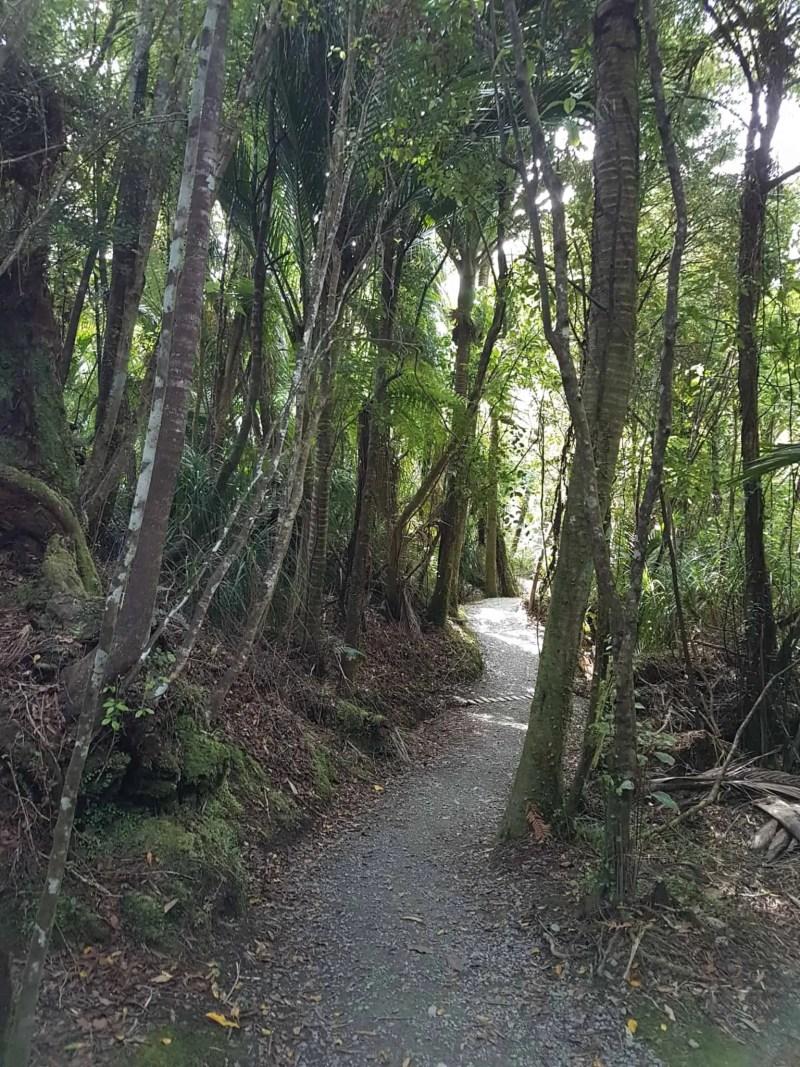 Nouvelle-Zélande, les incontournables Pancake Rocks ! 🤩 7