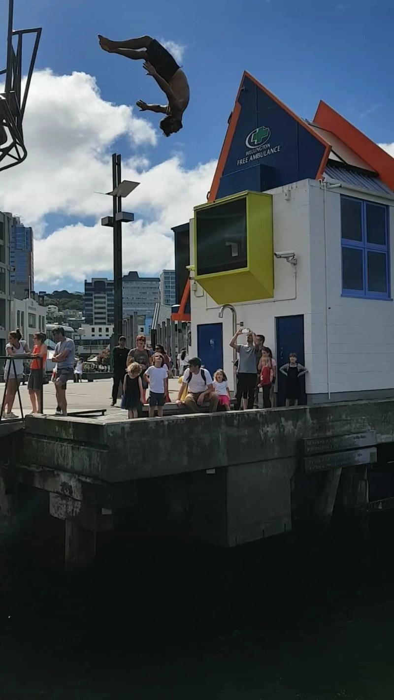 Nouvelle-Zélande, on visite  Wellington avant d'embarquer pour l'île du Sud ⛴ 19