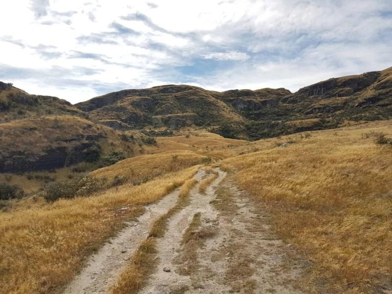 Nouvelle-Zélande, la Rocky Mountain Track une randonnée méconnue des touristes 🤩 12