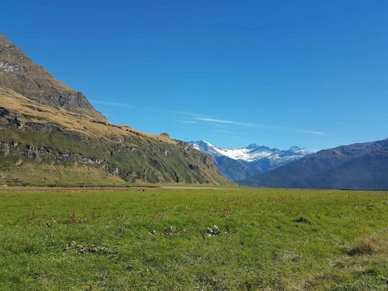 Nouvelle-Zélande, randonnée vers le Rob Roy Glacier et son sommet enneigé ❄ 3