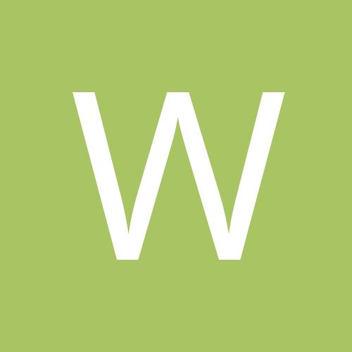 wilcoyote