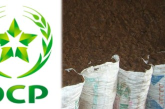Le groupe OCP célèbre les agricultrices