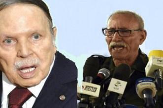 Sahara marocain: un géopoliticien français fustige l'Algérie et le polisario
