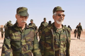 Sahara: la démission de Köhler inquiète le polisario