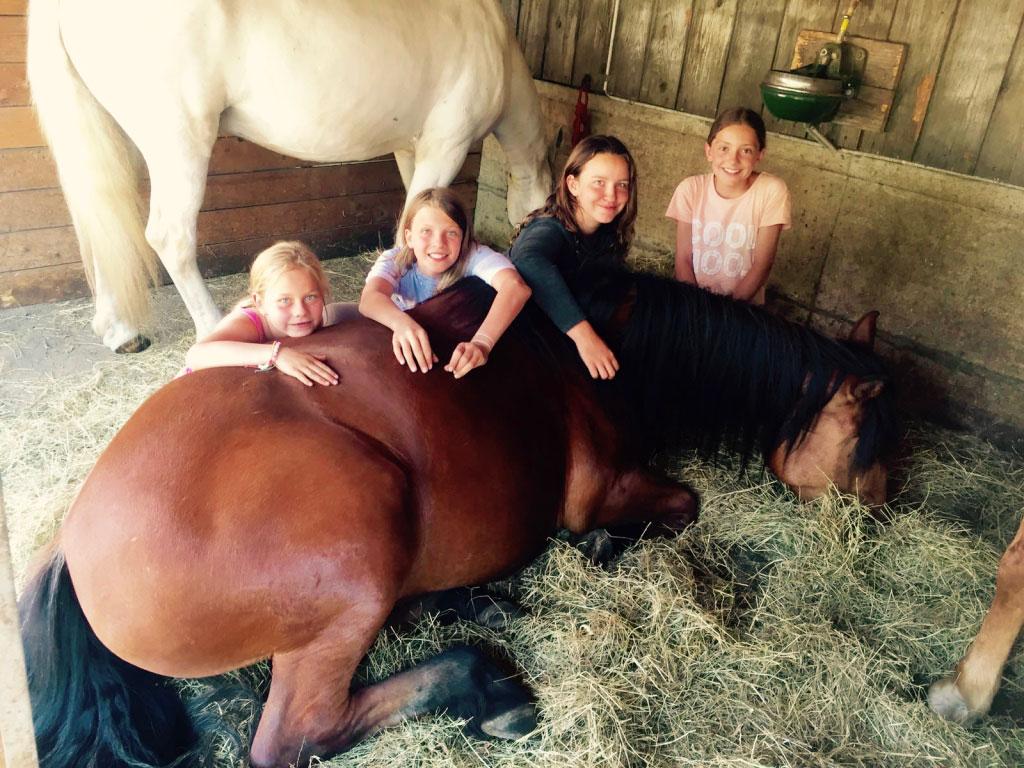 Camps d'équitation – Noël