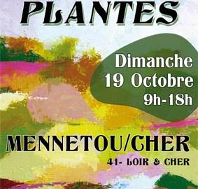 fête des plantes de Mennetou