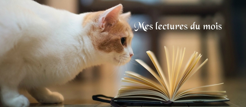 (back to the past) Mes lectures de mars 2019