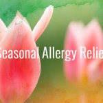 Proactive and integrative approaches to lessening allergy symptoms