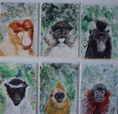 6 endangered monkeys