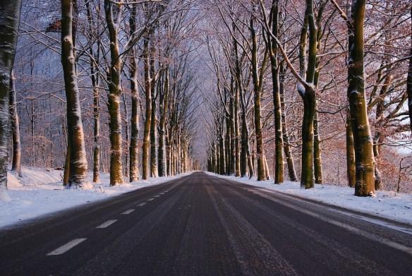 winter-1915843_1280