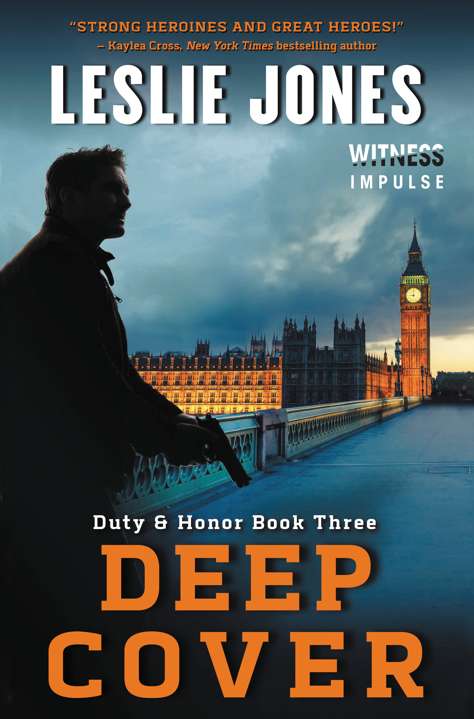Deep Cover Book Cover