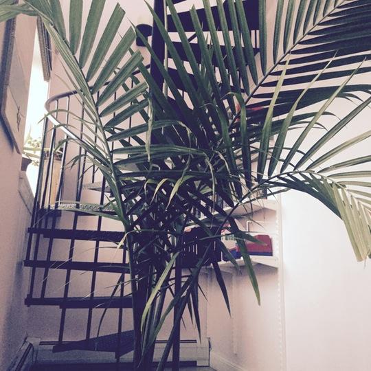 Spiral Staircase Goals Home Decor Inspiration