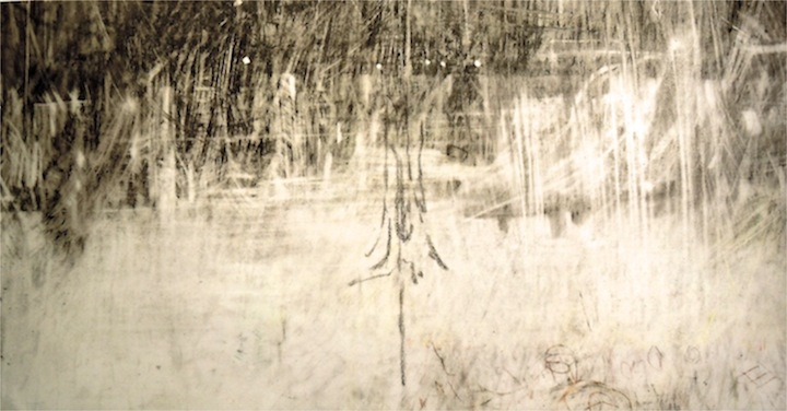 """Ghost Wood. Charcoal and crayon on vellum, 18.5"""" x 9.5"""", 2013  SOLD"""